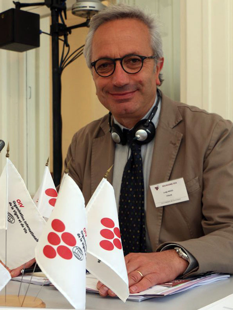 "foto: website Università degli Studi di Napoli ""Federico II"" https://www.docenti.unina.it/#!/professor/4c554947494d4f494f4d4f494c475536304832394633353253/riferimenti"